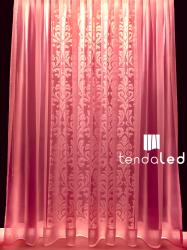 tendaled pink