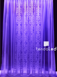 tendaled purple blue